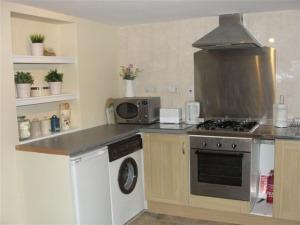 Garden flat kitchen view